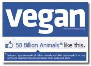 Who-likes-vegans