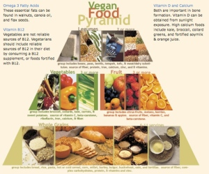 VeganFoodPyramid_grab-opt-1